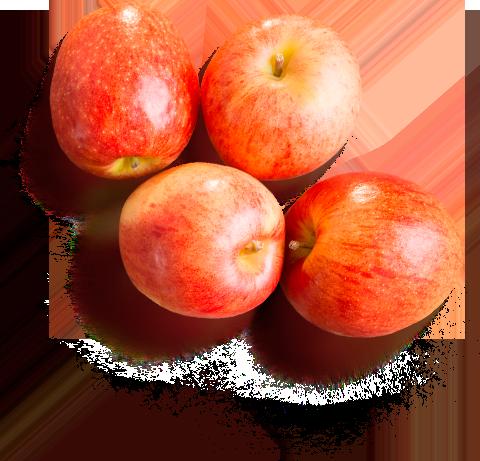 Яблоки для детей